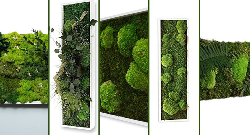 Top-5-tableau-vegetal-stabilise